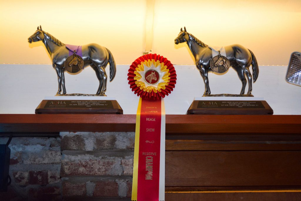 horse-show-award